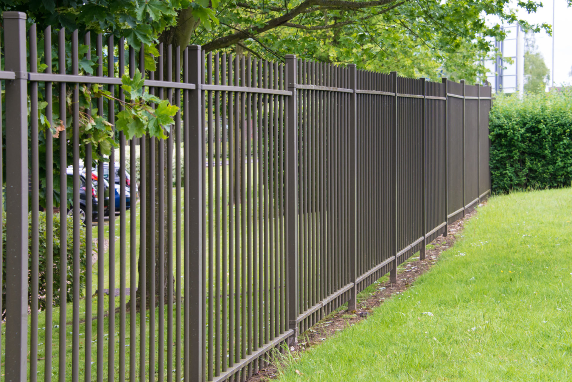 iron fence in a grass area