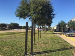 fence posts in a sugar land property