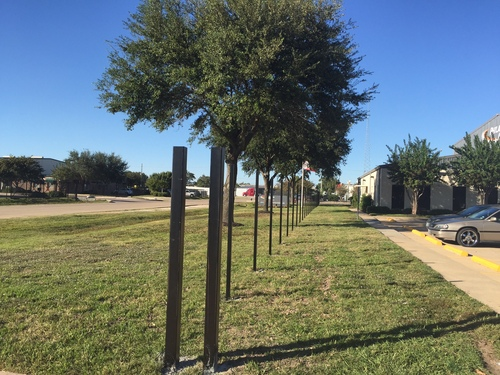 iron fence posts in the woodlands