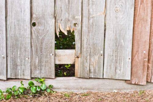 broken fence that needs repair